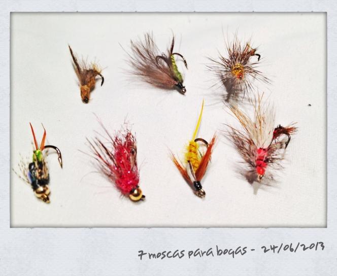 7 moscas para boga