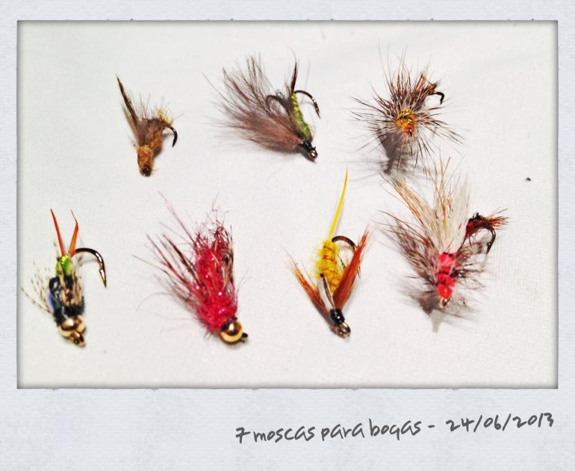Una imagen: 7 moscas para 7 bogas